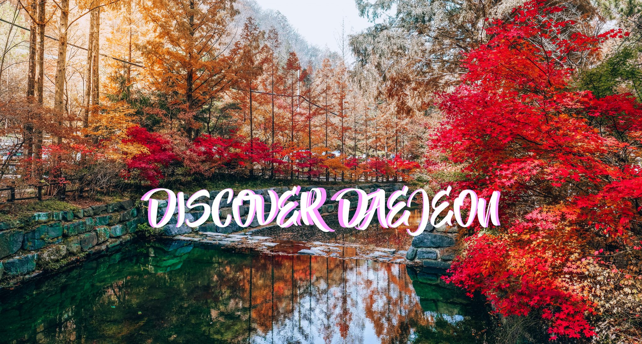 Discover Daejeon : A Comprehensive Travel Guide